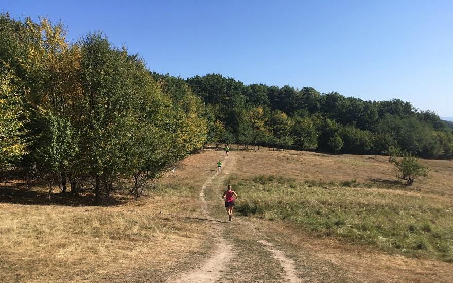 Maratonul Olteniei - 2019