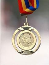 Medalie 2011 - Maraton Arad